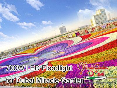700W LED Floodlight for Dubai Miracle Garden