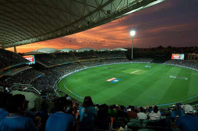cricket stadium lights