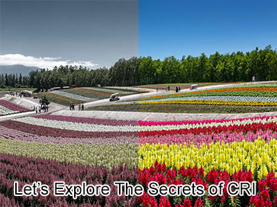 Let's Explore The Secrets of CRI!